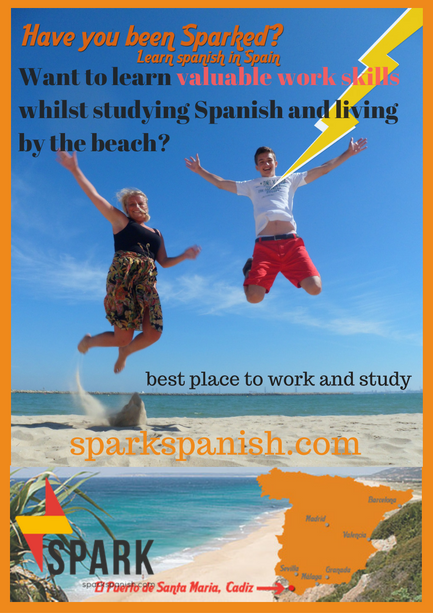 Want to learn valuable work skills whilst studying Spanish and living by the beach_